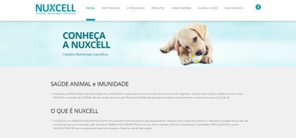 Site Nuxcell